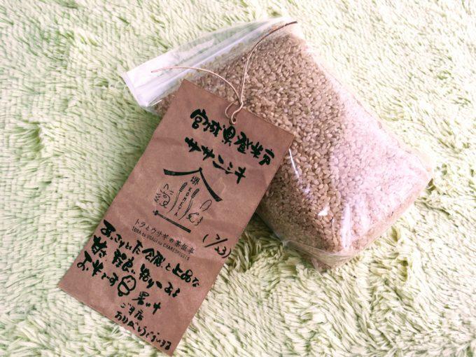 お米とタグ
