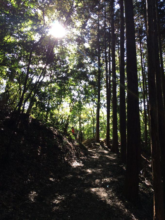 林道・出口