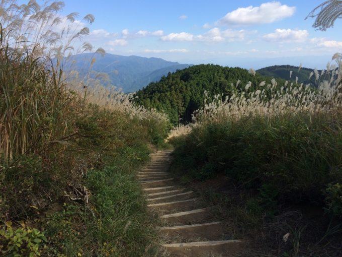 薄の丘・下り