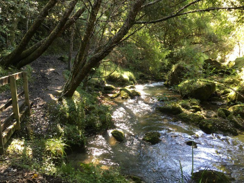 Tangoio River