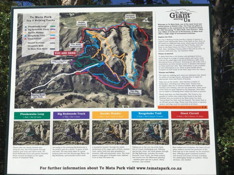 ハイキングコース